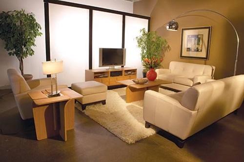 Tips-for-Creating-an-Elegant-Living-Room-7