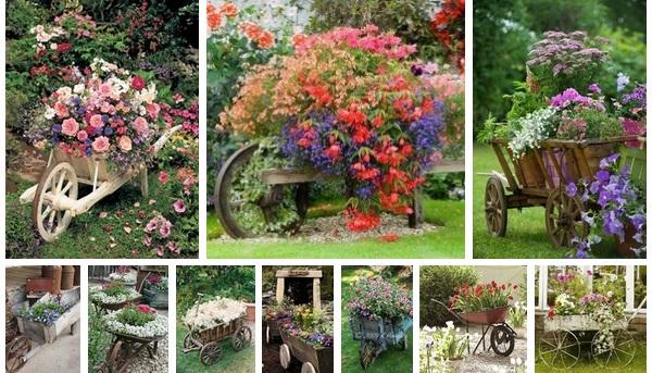 gardening-ideas-18