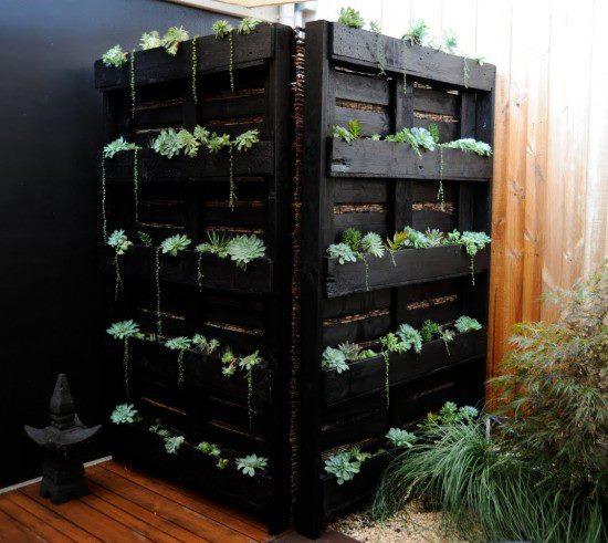 gardening-ideas-7