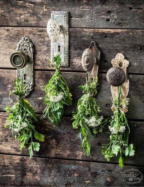 garden-DIYs-dip-feed-1