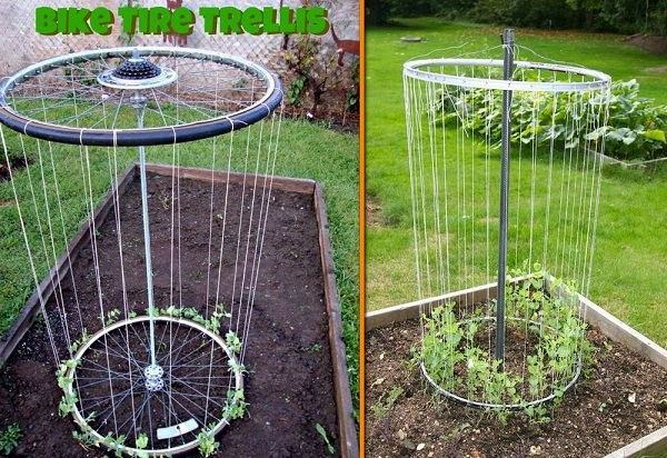 gardening-ideas-121