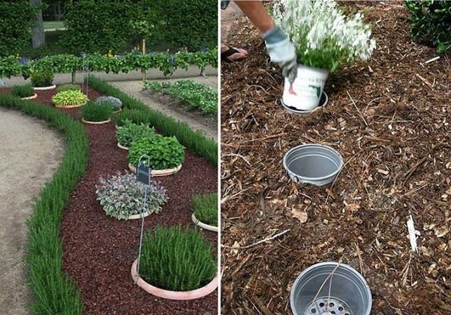 gardening-ideas-17