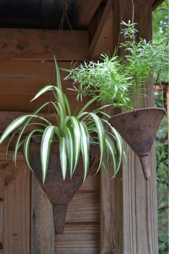 gardening-ideas-2