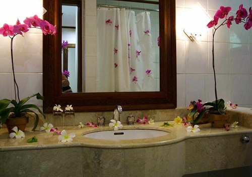 How-to-Decorate-Your-Home-Interior-with-Orchid-Flowers-1