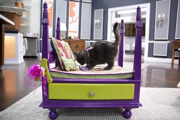 royal-pet-bed-from-old-table-dip-feed-2